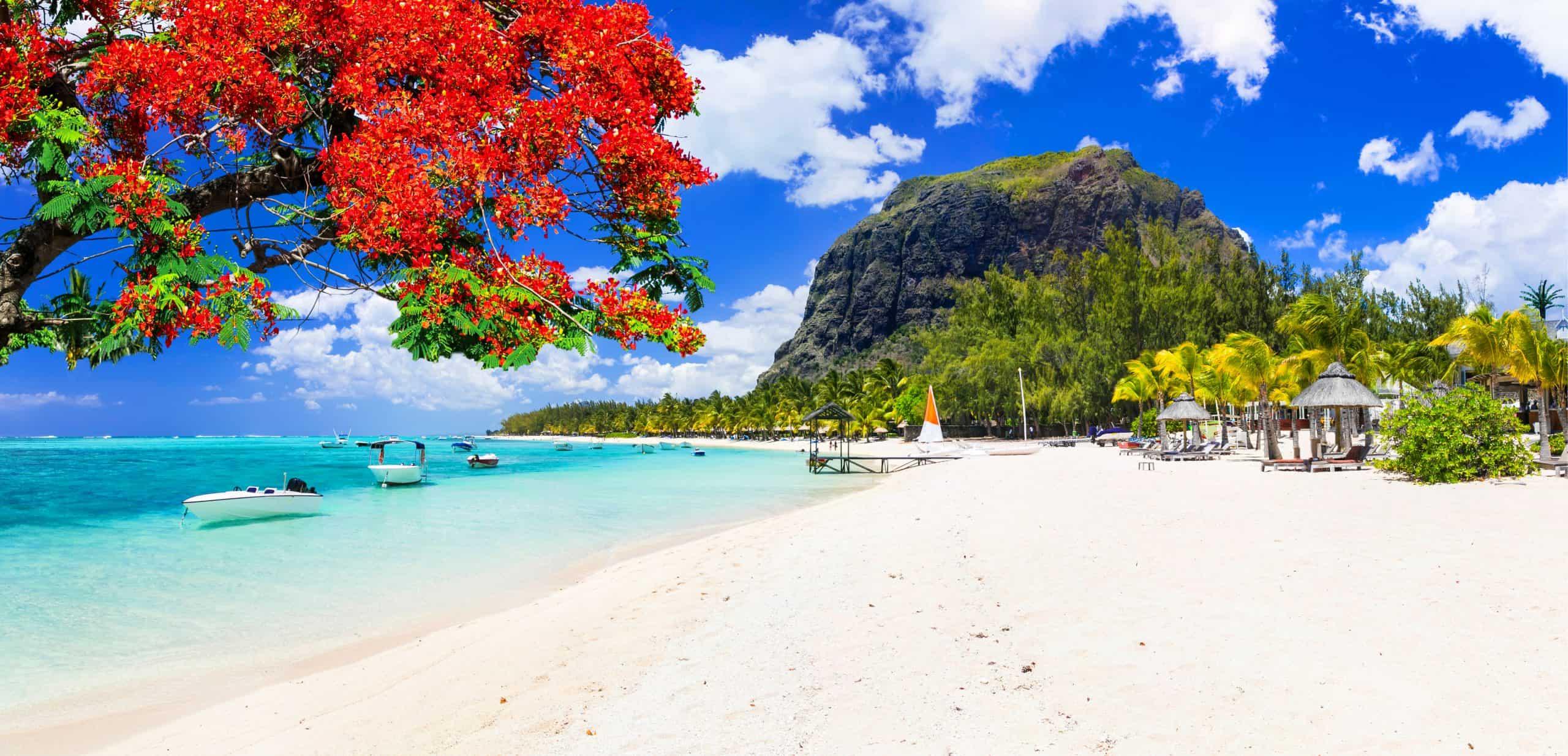 Mauritius vakantie