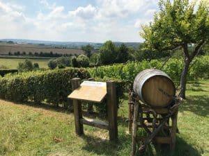 Uitzicht over het Limburgse heuvellandschap met een toegangshek van Route des Vins