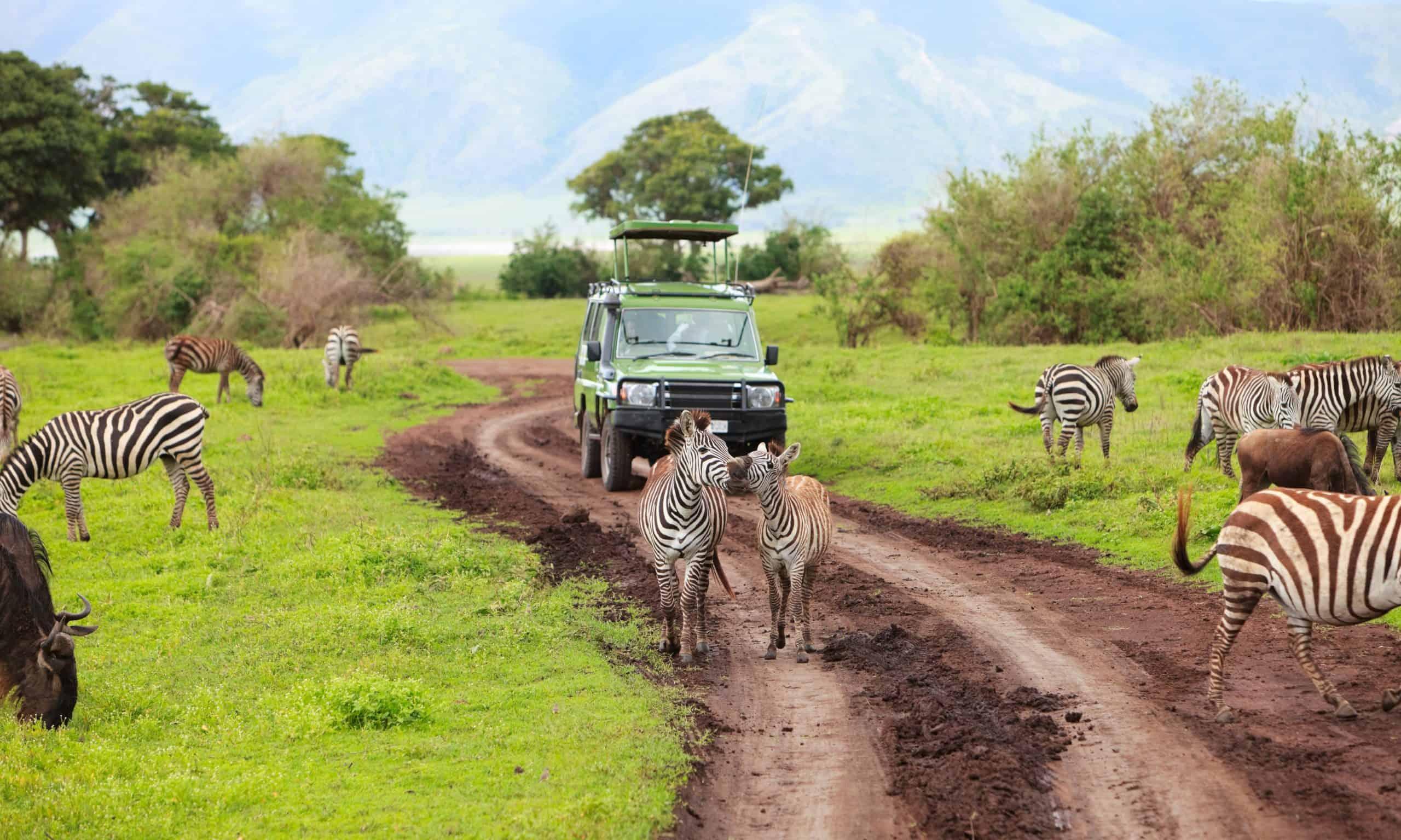 Vakantie Tanzania